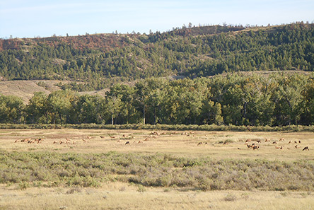 Sportsmen seek protections for BLM backcountry-9/13/14